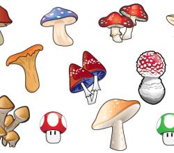 Free Mushroom Vector Art