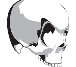 Vector Vampire Skull