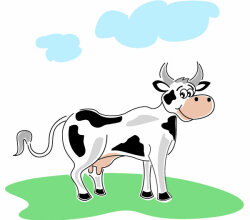 Illustration Of Cow