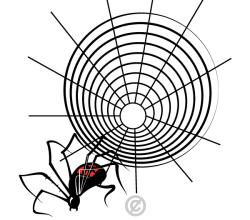 Spider Web Vector Graphics