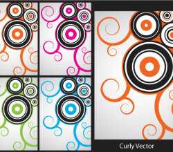 Curly Vector