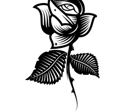Vector Clip Art Rose Image