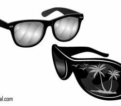 Free Sunglasses Vectors