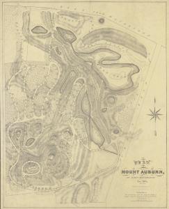 Plan of Mount Auburn, Alexander Wadsworth, 1831.
