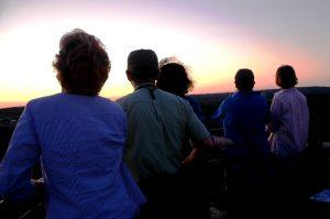 Watching Nighthawks from Washington Tower