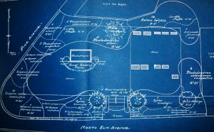 Collection of Lot Planting Plans, blueprint and graphite on trace paper, n.d.