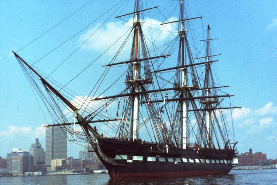 Pseudotsuga menziesii USS Constitution mast