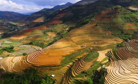 Rizières en terrasses du Nord Vietnam, voyage au Vietnam avec Nirvatravel