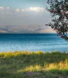 Déserts et Mers d'Israël