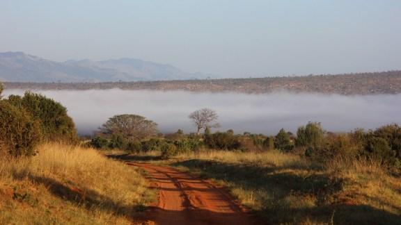 De Masaï Mara à Tsavo
