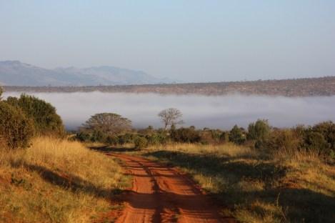 Piste dans le parc de Tsavo, safari au Kenya avec Nirvatravel