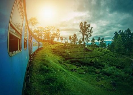 Le train de Ella dans les plantations de thé, voyage au Sri Lanka avec Nirvatravel