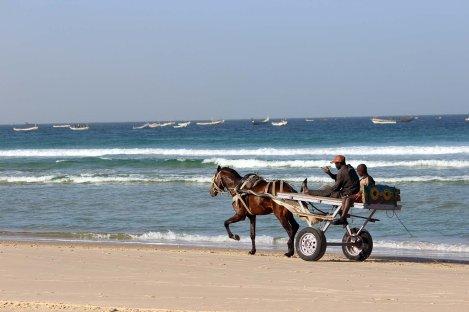 Charette tirée par un cheval sur la plage, vacances au Sénégal Nirvatravel