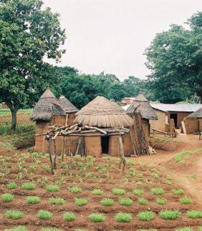 Terres de traditions Somba