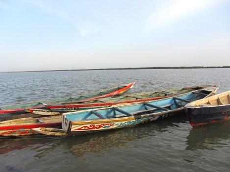 Pirogues sur le fleuve en Casamance, voyage au Sénégal avec une agence Nirvatravel