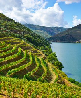Porto et la vallée du Douro