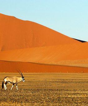 Namibie en famille