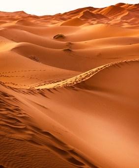 Grand Sud Marocain