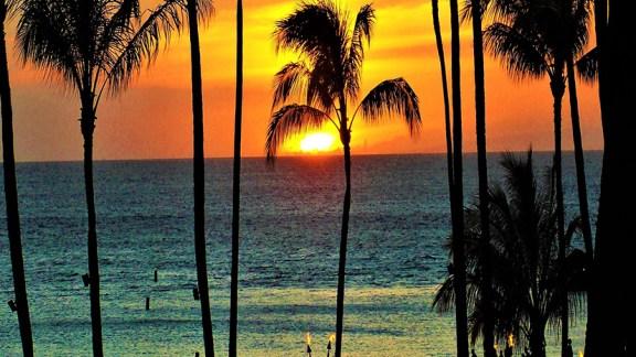 Best of des iles hawaïenne