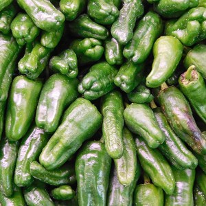 St. Supéry Blistered Padron Peppers closeup