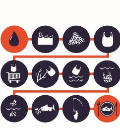 life cycle of a plastic bag from oil to your plate surfridereurope [ 1386 x 1056 Pixel ]