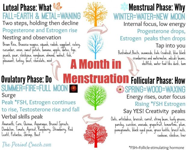Month in Menstruation graphics