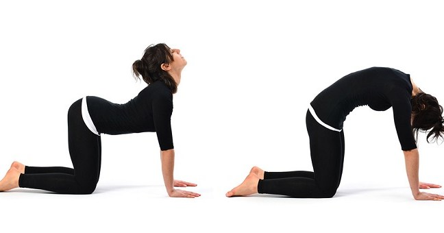 6 Exercises for a healthy spine that will ensure that you have a perfect back!