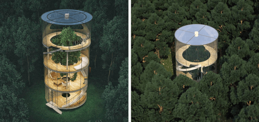 Could this fascinating glass tree house be the house of your dreams??
