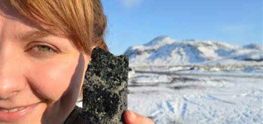 A first of its kind project in Iceland converts Carbon Dioxide into Stone
