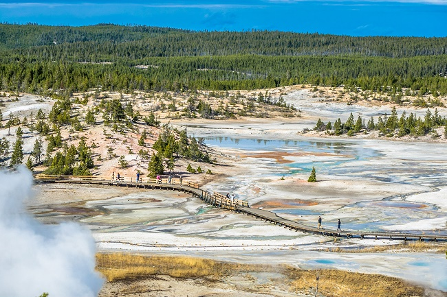 Regulations require tourists to stick to boardwalks at Yellowstone