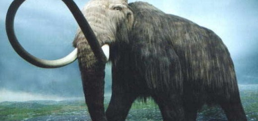 Scientists may resurrect the Woolly Mammoth to live again in 7 years