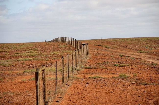The Dingo fence in Australia