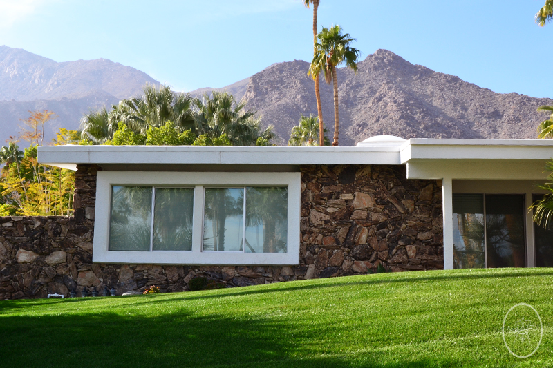 Palm Springs | Devel Men & Women