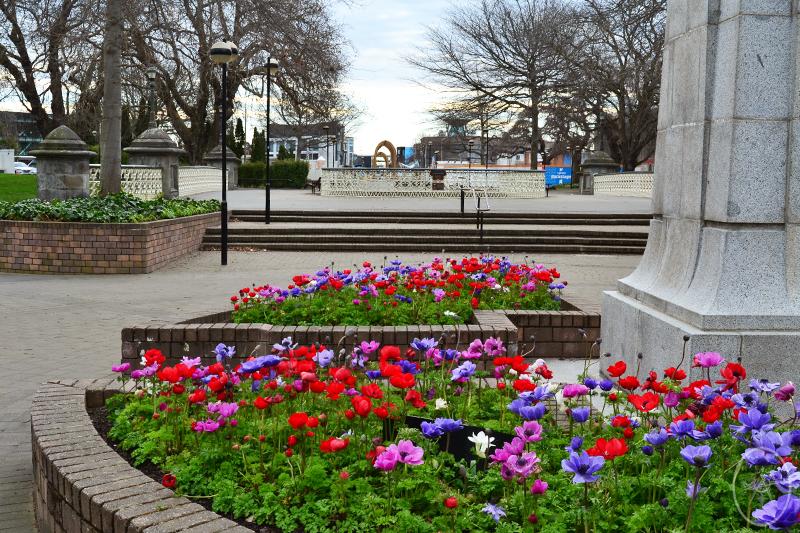 TTW: An Afternoon in Christchurch
