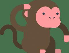 Developer Monkey
