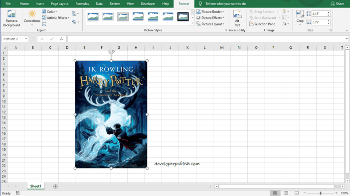 How to Insert Picture Into a Cell in Excel?