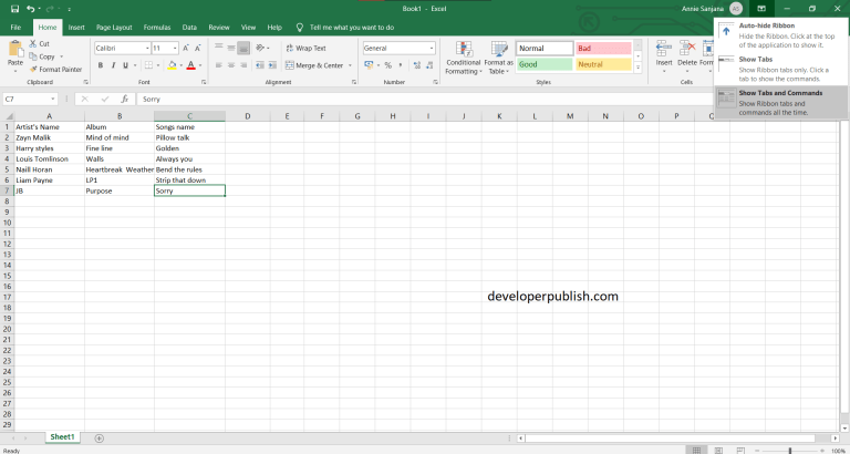 Excel Ribbon