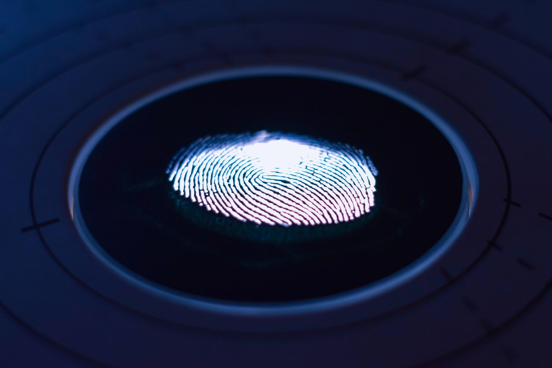 指紋のイメージ画像