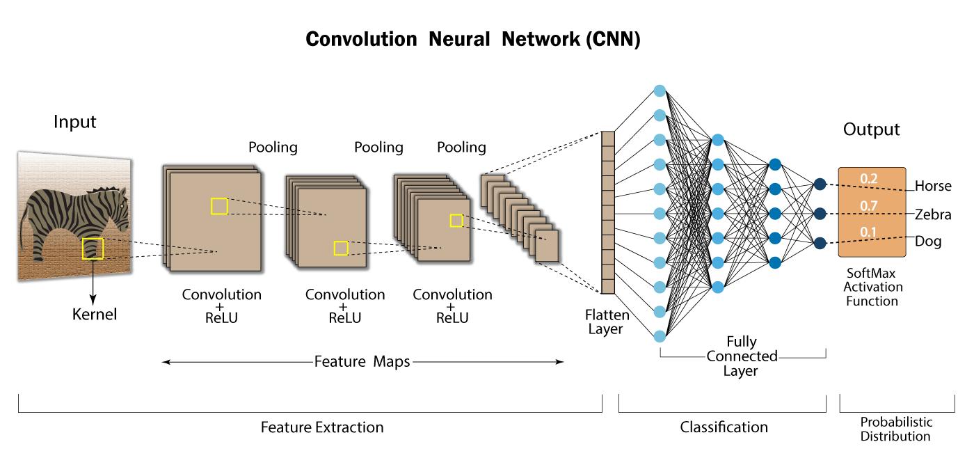 Convolutional Neural Network   Deep Learning   Developers Breach  CNN questions