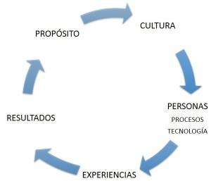 Ciclo CX