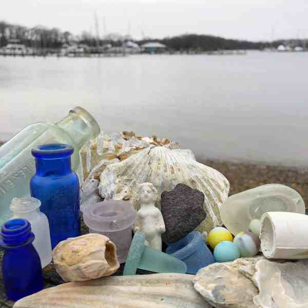 Exhibition Opening Beach Finds Of Chesapeake