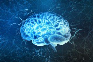 image sur la puissance du cerveau