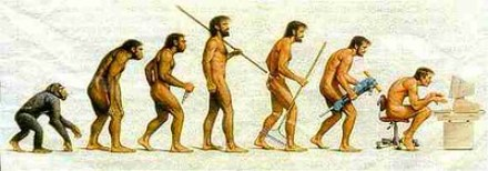 therorie-evolution