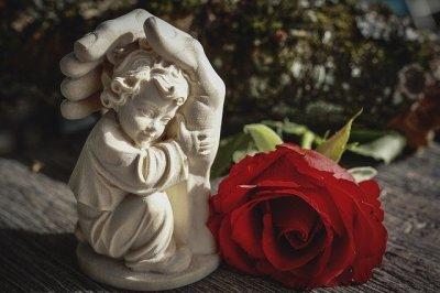 image symbolique de la reconnaissance et du réconfort