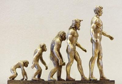 image de l'homme et de son évolution