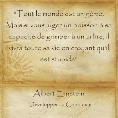 citation d'Einstein sur la confiance en soi qui dépend du contexte et du réalisable
