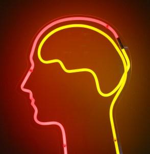 hémisphères cerveau