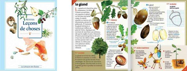 Découvrez l'ouvrage Petites leçons de choses pour pratiquer le français à travers la science