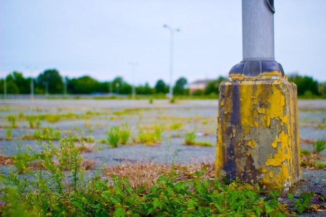 abandoned shopping cart network