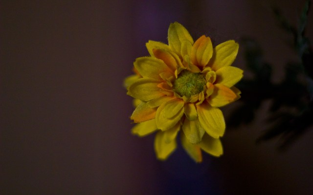 yellow fake flower